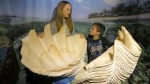 Muzej školjk in polžev Piran