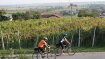 Kolesarske poti po Pomurju