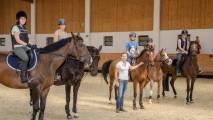 Center konjeniškega športa Celje