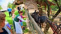 Turistična kmetija pri Lazarju
