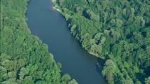 Mrtvice reke Mure - gozdna učna pot
