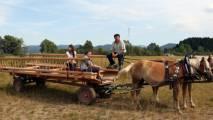 Kmetija odprtih vrat Levar