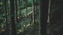 Pohodne in kolesarske poti